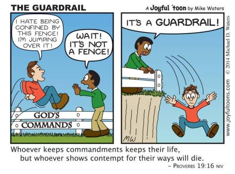 The Guardrail